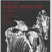An.Atlas.Of.Animal.Anatomy.For.Artists 动物透视~
